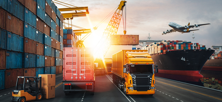 Business – Logistics & Distribution (Traineeship) Level 5